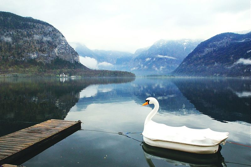 Swan Shape Boat Moored In Lake By Mountains Against Sky