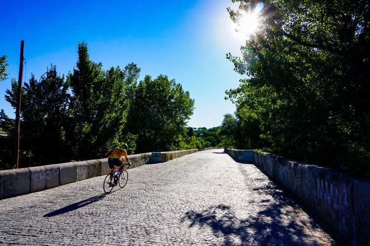 Man riding bicycle on road amidst trees against sky