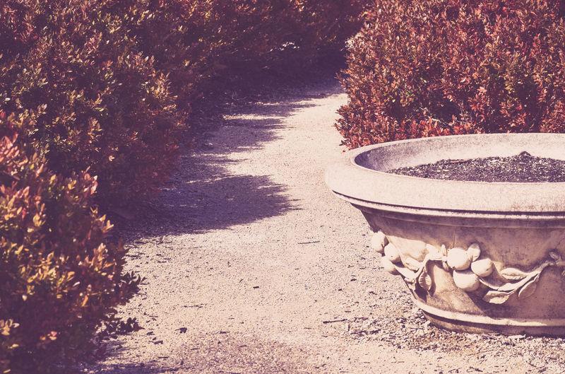 Bushes Concrete Foot Path Gravel Path Metro Parks Parks And Recreation Planter Pot Vintage
