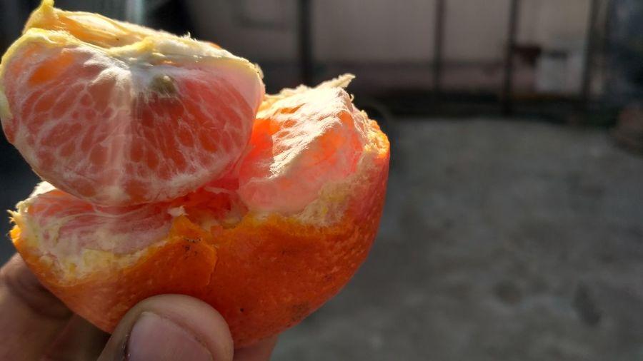 Fruit Freshness