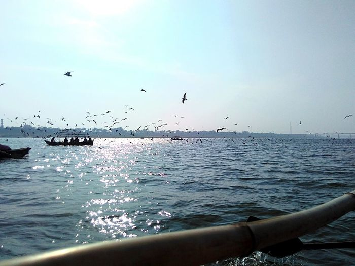 Allahabad, Flock Of Birds , Horizon Over Water Yamuna