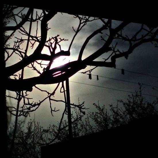 Igers SPAIN España Catalunya Reus Best  Samsung Blue Ice Cold Sunset Amazing Sunsetporn Sunset Top Laselva GotIt Gotic Dark Darkness