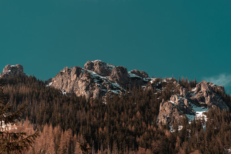 Panoramic view of trees and mountains against clear blue sky