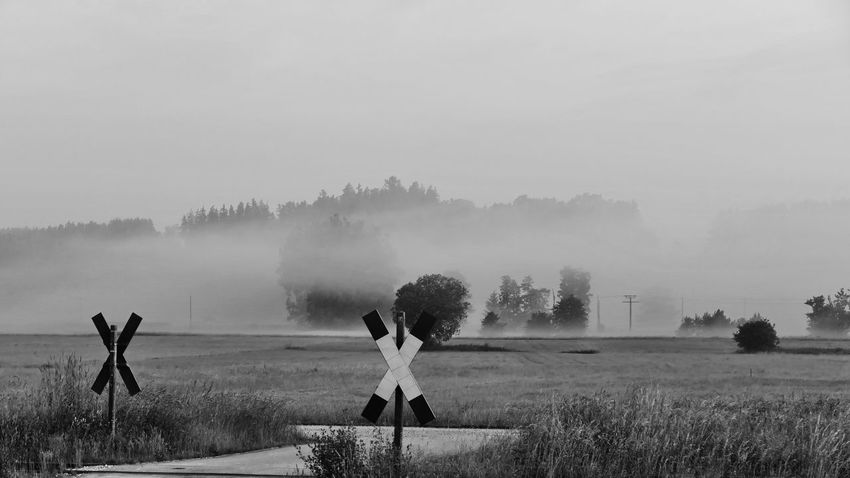 fog in the morning Bavarian Landscape Morning Beauty In Nature Blackandwhite Photography Day Environment Field Fog Human Arm Land Landscape Lifestyles Mystic Mood Nature One Person Outdoors Plant Real People Scenics - Nature Sky Standing Tranquil Scene Tranquility Tree Women