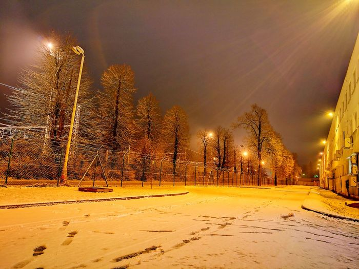 Night Outdoors Winter Illuminated Cold Temperature Sky Snow Tree Nature No People