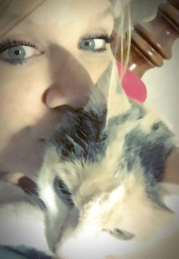 Goodnight ❤️ Me And My LiliBug I Must Sleep Insomnia Yes, Another LiliBug Pic 😘😴😴💤💤