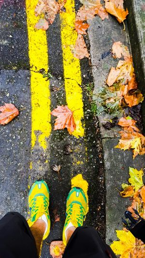 Sport In The City Football Shoes Yellow Yellow Flowers Yellow Flower Feet Ground Exploring New Ground Footpath Walking Around Walking Around The City  Walking Go Foward✌️ Always Look Foward Keep Moving Foward Foward Streetphotography Street Photography Narure_collection Walk This Way Walkwalkwalk Walker Nature Photography Walkway