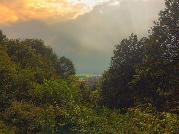 Clouds Ausblick Aufs Land Landschaft Orange Sky Wolken Und Himmel Forest Landscape Wald