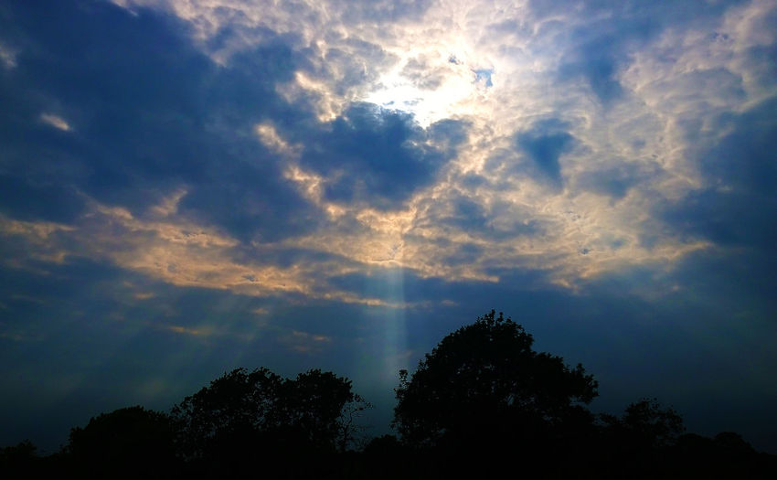 Beauty In Nature Cloud Cloud - Sky Cloudscape Cloudy Dramatic Sky Godwork, Growth High Section Idyllic Low Angle View Majestic Nature No People Outdoors Outline Overcast Scenics Sky Sunset Tranquil Scene Tranquility Tree Treetop Weather