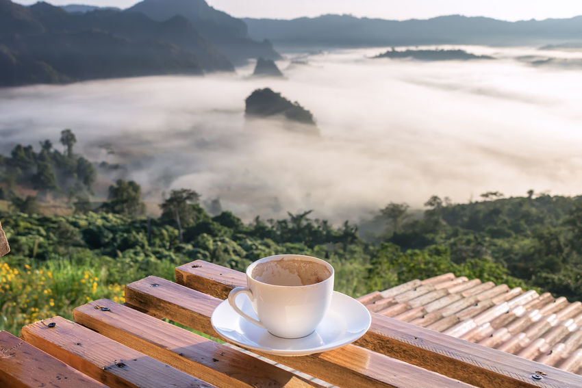 Empty Cup of Coffee on Wood Floor with Misty and Mountain Background at Phu Langka, Payao Province, Thailand Beautiful Blackground Camping Coffee Shop Coffee ☕ Family❤ Hot Morning Nature Thailand Yoka Camp Coffee Cup Cup Cup Of Coffee Cup Of Coffee Brighten Up Your Day Cup Of Coffee On The Table Flower Fog Landscape Mist Mountain Sun Sunrise Tent