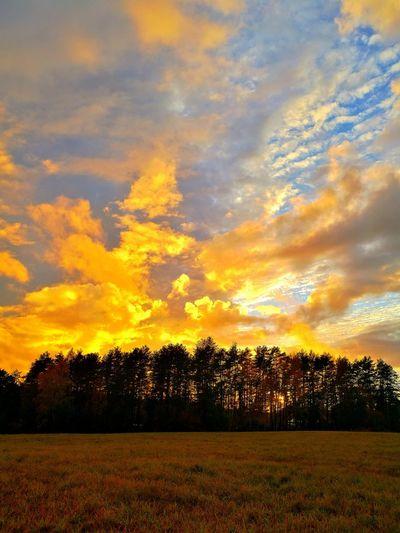 Sunset Autumn