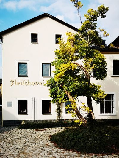 Hinterhermsdorf Hinterhermsdorf Sächsische Schweiz Sachsen Germany Deutschland Residential Building Tree Window Façade House Architecture Building Exterior Sky Built Structure Ivy Whitewashed Overgrown Housing Development