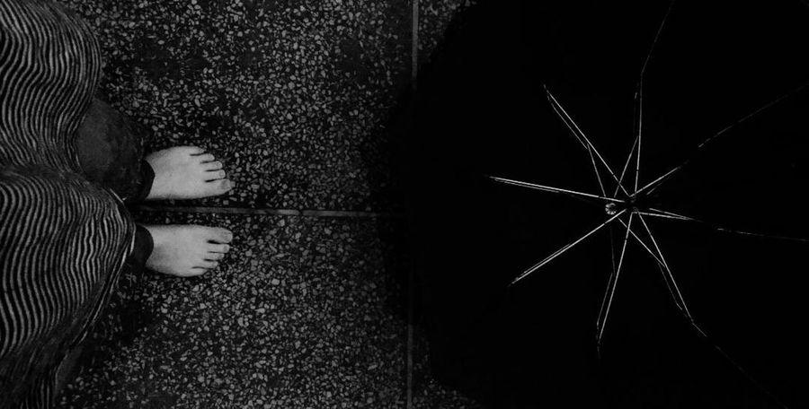 Rain Umbrella Morning Weather