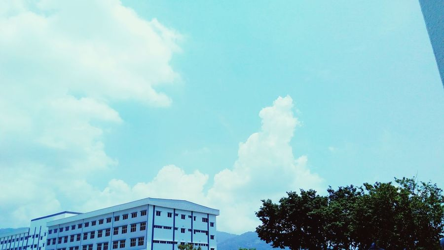 stuck #photography #penang #malaysiaphotographer #Sabahan #currentlyinpenang #visitpenang #CollegeBound City Tree Blue Sky Architecture Building Exterior Built Structure Cloud - Sky