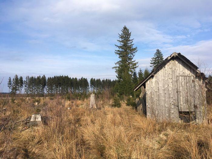 hüttchen Decayed Beauty Hut Hütte Sky Cloud - Sky Tree Plant Architecture