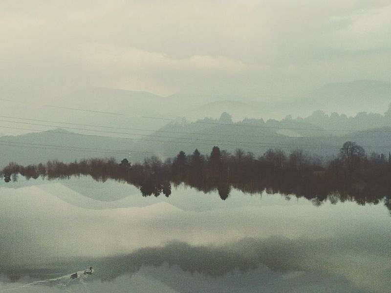 Landscape Lake NatureScenics Silhouette Wilderness Beauty In Nature Outdoors Water Landscape Layers Double Exposure Unreal Abstract Landscape Ducks In Water Dreamscape Unrealistic Tranquility