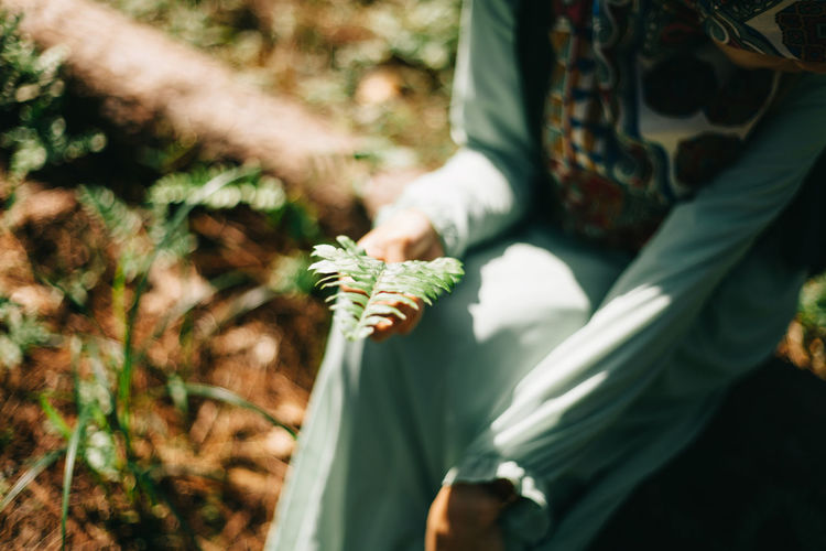 Close-up of woman hand on plant in field