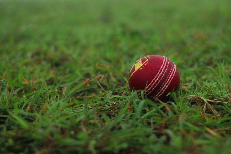 Cricket ball Cricket Field Cricket Ball Grass Sport Ball Green Color No People Plant Selective Focus