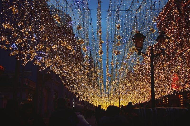 Crowd on illuminated tree against sky at night