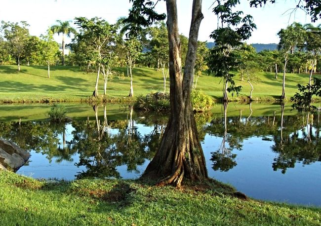 Jomaldo Caguas Puerto Rico Perspectives Nature Water Reflections