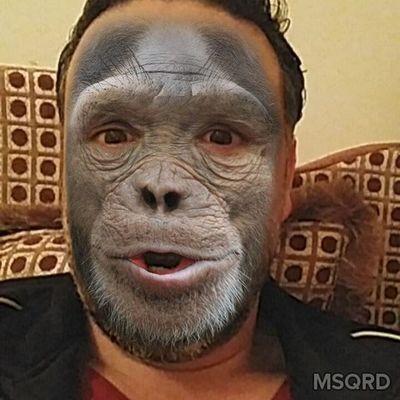 Monkey Wasama Janzour Tripoli Libya وسامة طرابلس ليبيا جنزور قرد