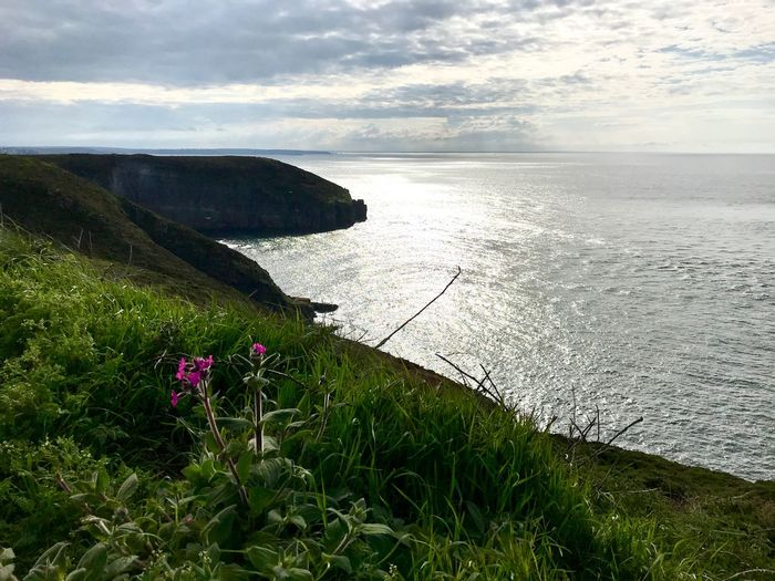 Cliffs Water