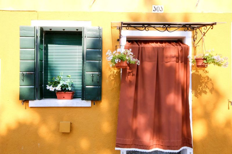 Yellow Italy Buranoisland Burano Yellow Color Built Structure Building Exterior Window Architecture No People Building Door Wall - Building Feature Outdoors House Potted Plant Wall