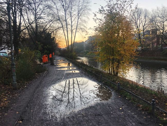 Morning Canals And Waterways Reflection Tree Plant Nature Transportation Sky Water Road Day Tranquility Sunlight No People Wet Outdoors The Way Forward City Diminishing Perspective Direction
