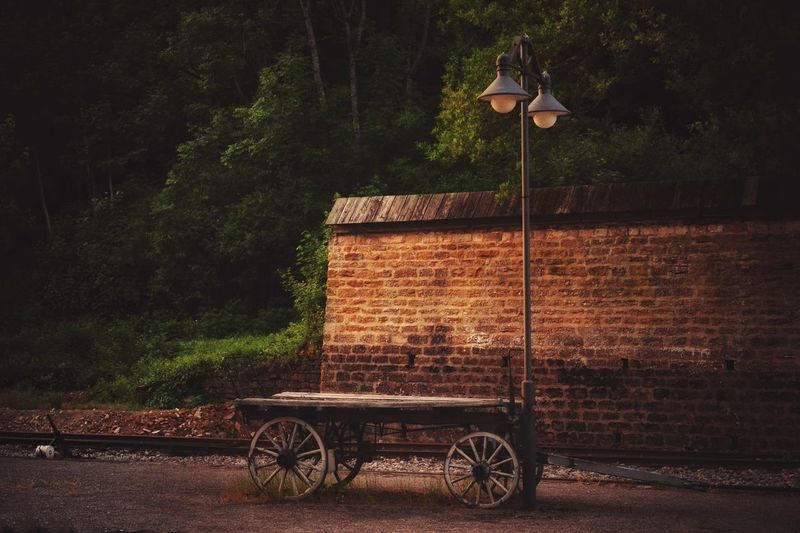 Cart on street by trees and electric lamp