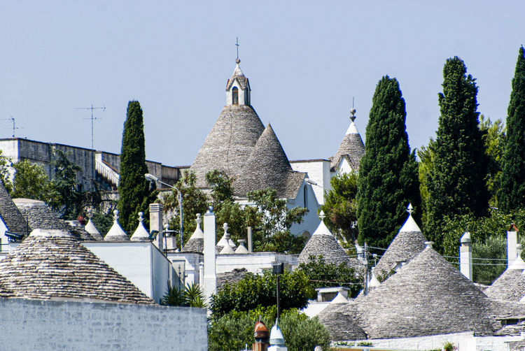 The magic of Alberobello's Trulli travel location - It was really amazing to know this particulars constructions full of charming and to ear the history about the Alberobello's Trulli in the Italy Apulia region (Puglia). The history said that the Alberobello's origins date back to the Middle Age. The settlers built the houses with stone and without cement and with the easiest way to demolish them in the case of an inspection by the Kingdom of Naples, thus avoiding paying taxes. Another interesting thing is the decorative pinnacles and symbols painted on many roofs of the trulli that were often used to identify the different religions of their inhabitants. Albelobelo Italia Viajes  2019 EyeEm Awards The Traveler - 2019 EyeEm Awards The Architect - 2019 EyeEm Awards The Photojournalist - 2019 EyeEm Awards The Street Photographer - 2019 EyeEm Awards Italy EyeEm Gallery EyeEm Best Shots Eyeem4photography Architecture Tree Plant Religion Built Structure Place Of Worship Sky Building Exterior Belief Building Spirituality Clear Sky Nature No People Day History The Past Outdoors Spire