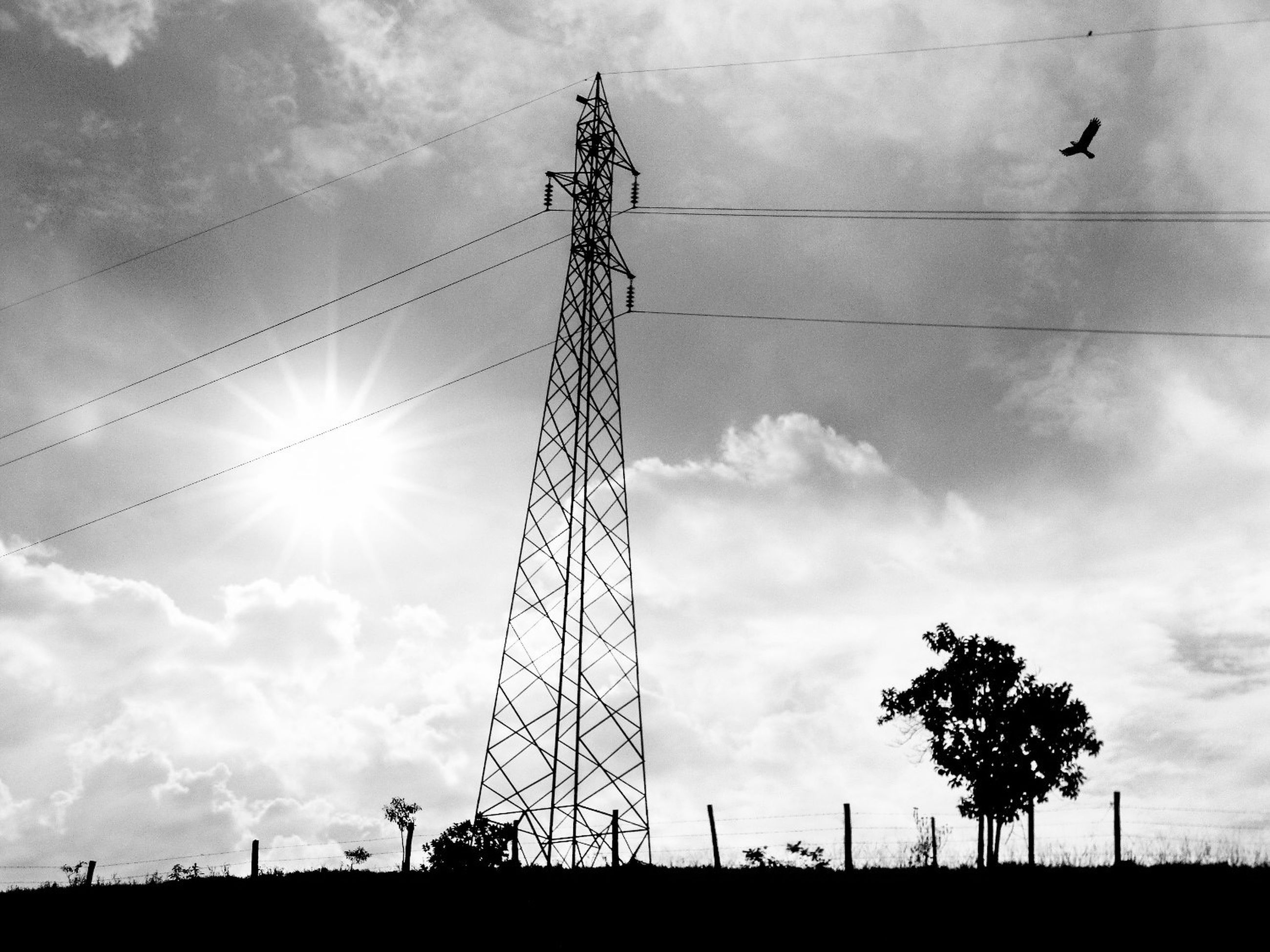 low angle view, sky, electricity pylon, silhouette, power line, power supply, fuel and power generation, electricity, sun, cloud - sky, connection, technology, cloudy, cloud, sunset, sunlight, cable, outdoors, sunbeam, no people