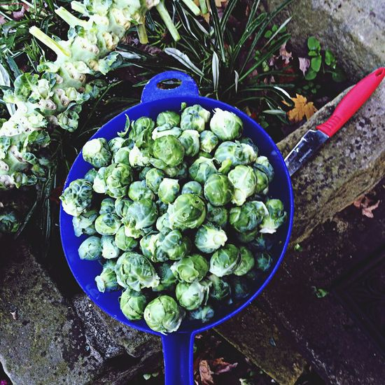 Autumn Brussels Sprouts