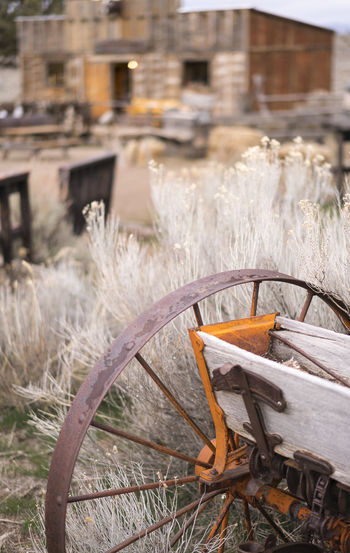Rusty farm equipment and western town. Architecture Built Structure Close-up Day Field Focus On Foreground Front Or Back Yard Grass Growth Land Mode Of Transportation Nature No People Outdoors Plant Transportation Wagon Wheel Water Wheel Wood - Material