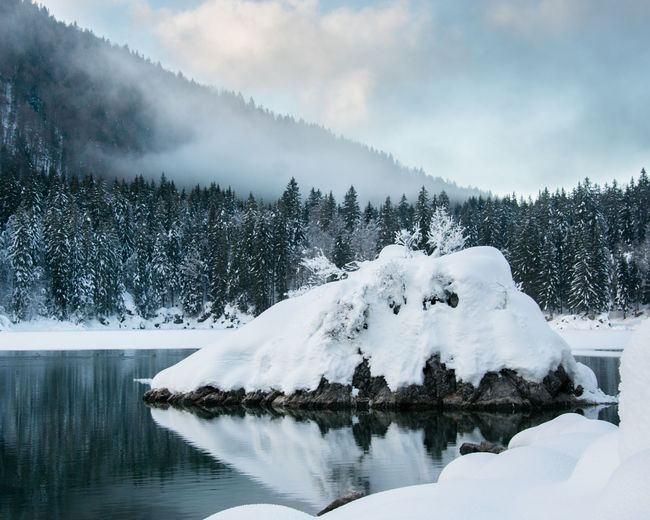 Snow covered trees by lake against sky