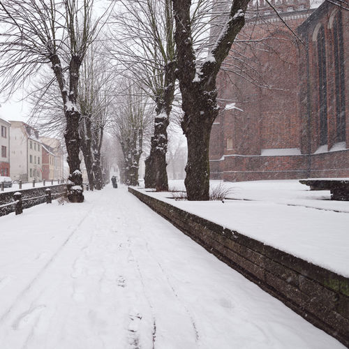 view of snow covered buildings in city Historical Building Mecklenburg-Vorpommern Winter Winterscapes Architecture Bare Tree Beauty In Nature Building Exterior Built Structure Cold Temperature Day Germany Nature No People Old Buildings Oldtown Outdoors Philipp Dase Sky Snow Snow Covered Snowing Tree Weather Winter Winter In The City Wismar The Traveler - 2018 EyeEm Awards