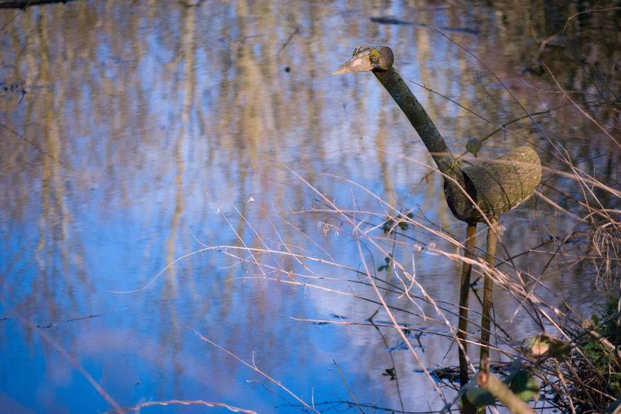 Bird Model Wooden Figure Stream Nature Reflection Blue Sky Water Bird Model Wooden Sculpture Bird Sculpture
