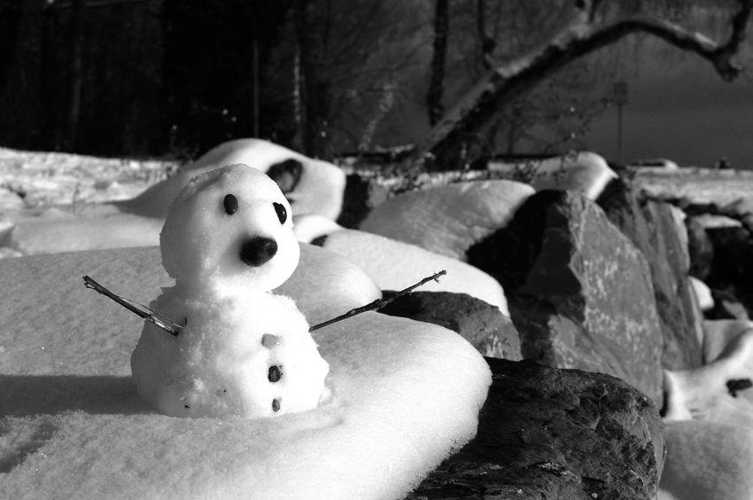 Snowman Winter winteriscoming