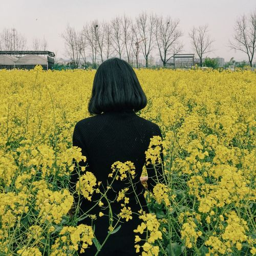 Rear view of woman standing on rape field against sky
