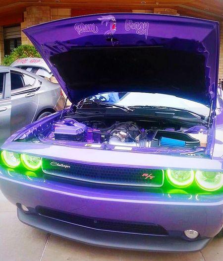 Arizona Glendale, AZ Westgate Entertainment District Hot Rod Night Car Show Dodge Challenger Customized Unique Purple Lime Green Headlights