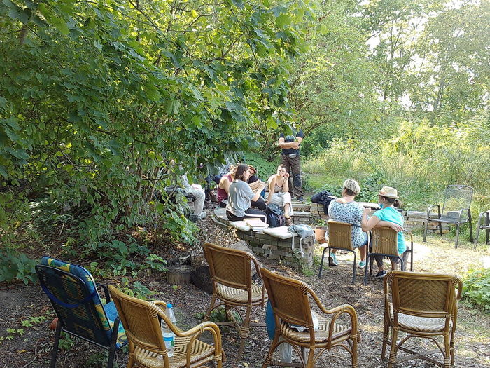 People sitting on chair against plants in forest