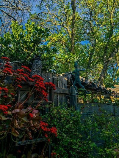 My Favorite Place Garden Photography Patio HDR