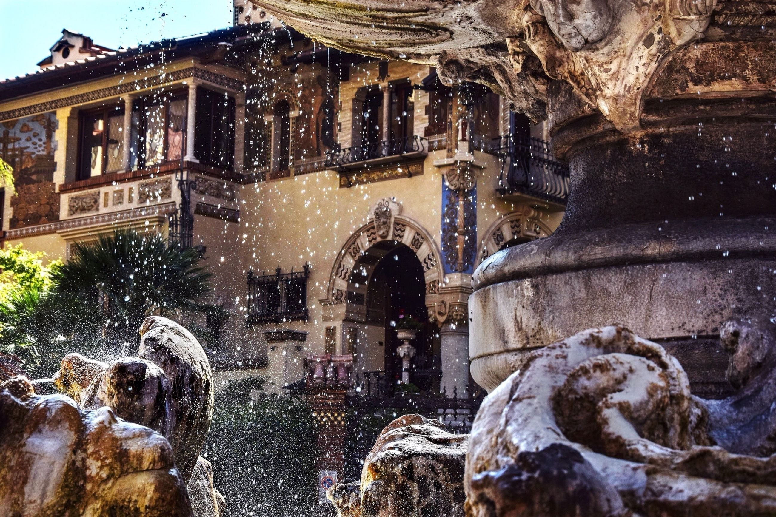 building exterior, architecture, built structure, animal themes, water, one animal, building, outdoors, city, fountain, day, tree, sunlight, no people, house, residential building, window, residential structure, reflection, mammal