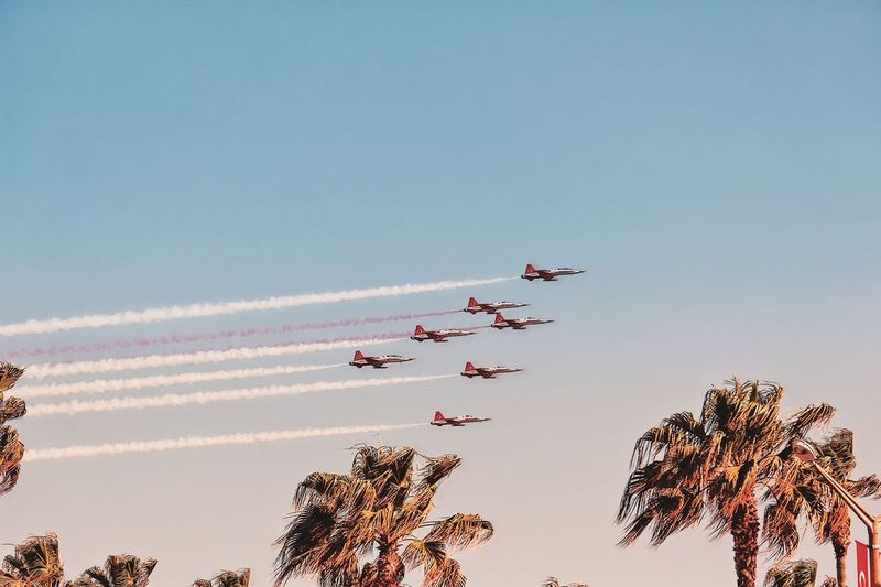 Freedom Mersin Sky Air Vehicle Mode Of Transportation Airplane Transportation Flying Low Angle View Nature Teamwork on the move Tree Airshow Cloud - Sky Plant Fighter Plane Motion Group Of People Plane