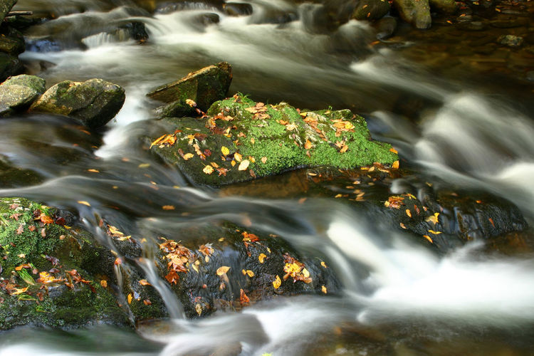 Blurred Motion Of Water Flowing In Stream