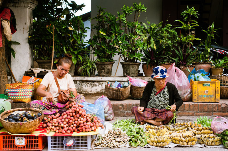 women in the street market Luang Prabang, Laos Basket Business Container Day Food Food And Drink For Sale Freshness Fruit Healthy Eating Large Group Of Objects Market Market Stall Market Vendor One Person Outdoors Real People Retail  Sitting Street Market Vegetable Wellbeing
