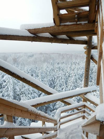 Snow Winter No People Tree Cold Temperature Outdoors Sky Day View Tower View Point Latvia Riga Point Of View Forestwalk Forest View From Above