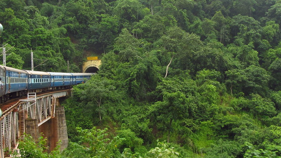 Transportation Railroad Track Tunnel Mountain Exceptional Photographs Mode Of Transport Green Color Bridge Curve Train Nature Bridge - Man Made Structure Journey The Color Of School EyeEm My Year My View Travel Photography Eastern Ghats India My Photo Commute Travel The EyeEm Collection
