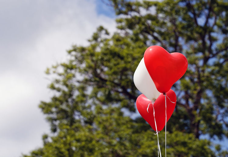 Low angle view of heart shape balloon against trees