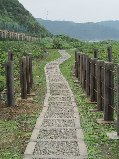 Beauty In Nature Check This Out Fence Grass Landscape Pathway Scenic Drive Scenics Taiwan