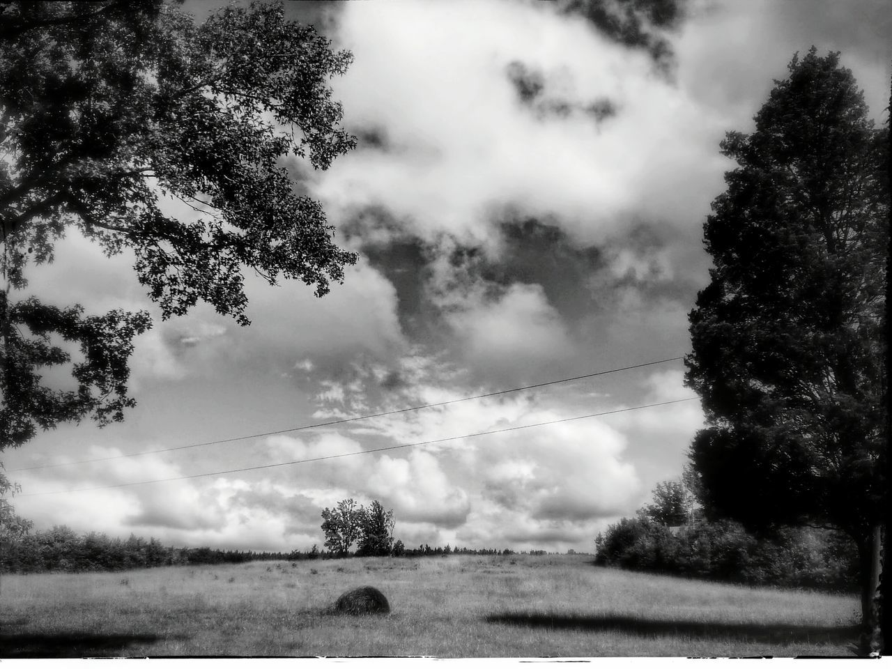 View Of Trees In Field Against Cloudy Sky